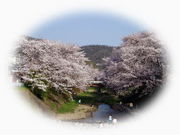 井手町立泉ヶ丘中学校