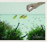 AQUAPIT / アクアピット