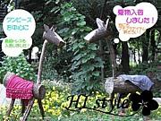 ★HI style&HI life★