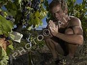 自然派が大好き!ワインと写真