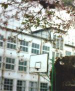 京都市立尚徳中学校