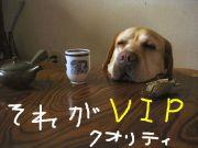 VIPPER福島支部