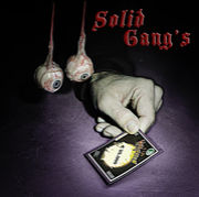 Solid Gang's