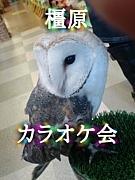 ♪橿原☆カラオケ★会♪