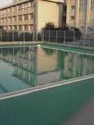 都立八王子東高等学校水泳部