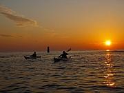 Buena Vista★ -kayak-カヤック