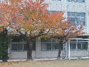 大阪市立今市中学校13期生同窓会