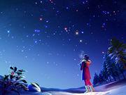 ゚.+:。星を見上げて゚.+:。