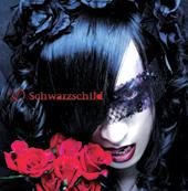 Schwarzschild/D