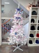 12月生まれとクリスマスは一緒!?