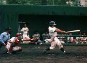 山口大学体育会硬式野球部