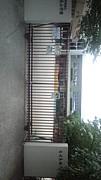 さくら幼稚園in京都市