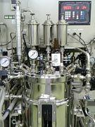 生命工学研究室(1研・2研)