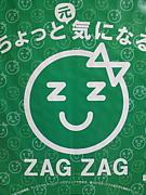 株式会社ザグザグ H24内定者