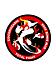 総合格闘技団体 志