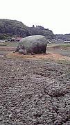 象岩会日吉支部