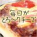 *☆毎日がとろ〜りチーズ☆*
