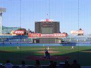 早稲田大学野球サークルW.B.C