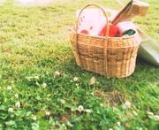 ピクニックしよう!