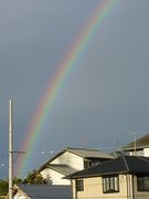 虹警報発令中 Rainbow Alert