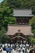 鎌倉、茅ヶ崎近辺読書会