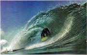 ニーボードサーフィンのススメ