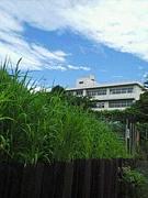 上飯田中学校第28期