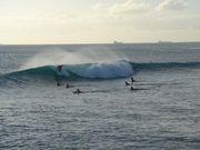 Hawaii にサーフトリップ