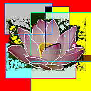 Lotus Ray カード