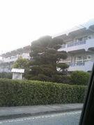 勝間小学校(高瀬町)