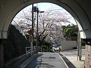 桜台中学3年1組'79年卒の会