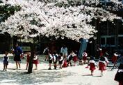 京都 北野幼稚園
