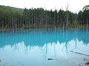 美瑛の青い池(青池)