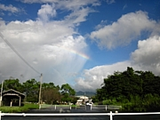 東北地方太平洋沖地震*心のケア