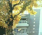 東京成徳短期大学付属高等学校★