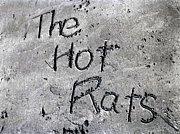 The Hot Rats