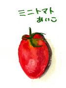 ミニトマトあいこは日本一!