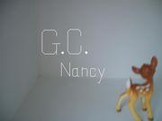 ●Gateau Chocolate Nancy●