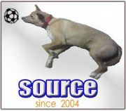 SOURCE Futsul Club