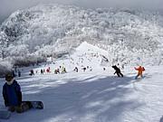 GO!GO!五ヶ瀬スキー場!LOVE!
