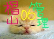 椙山&a06F管理