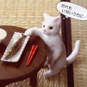 ♡ぷちねこ日記♡