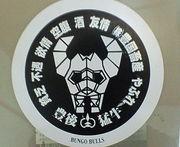 ☆ 豊後BULLS ☆