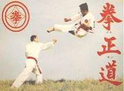 総合武道「拳正道」