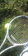 柏陽高校硬式テニス部36期