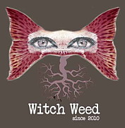 ▲▲▼WitchWeed
