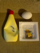 納豆+卵黄+マヨネーズ+ネギ