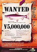 クニマスを釣るなよ〜!