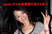 Asukaにゃんを応援するにゃあ!!