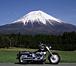ゆる〜いバイク仲間